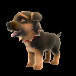 ジャーマン シェパードの子犬