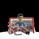 Goalie Pads