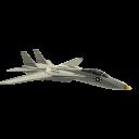 Tomcat-Kampfflugzeug
