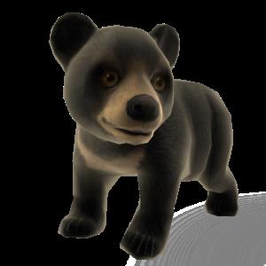 Zoo Tycoon Sun Bear Pet