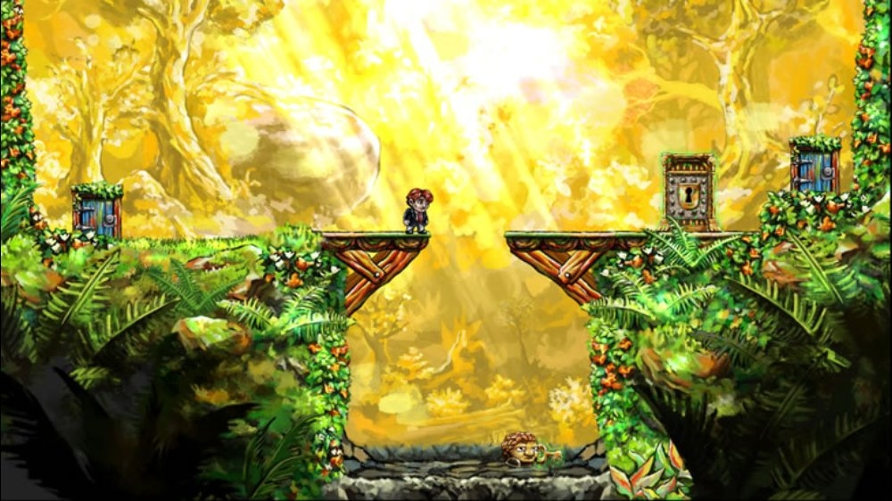 Image from Braid